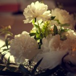 fiori-pietrasanta-3